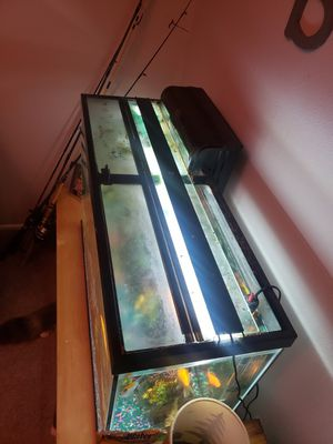 45 gallon fish tank and supplies for Sale in Portland, OR