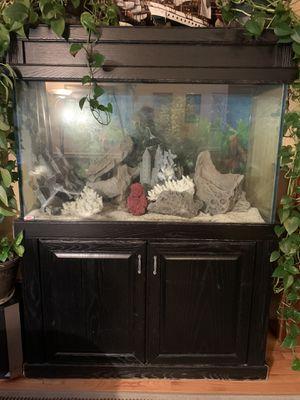 Aquarium 100 gal tank salt water for Sale in Federal Way, WA
