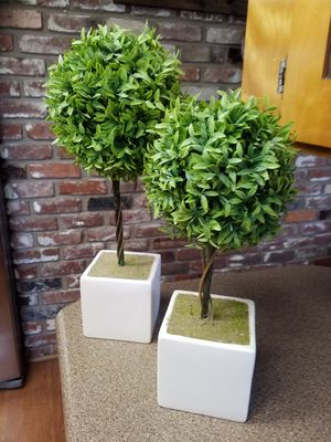 2 pc. Topiary set for Sale in Medford, OR