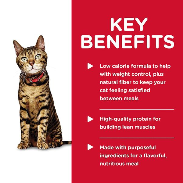 New Hill's Science Diet Wet Cat Food