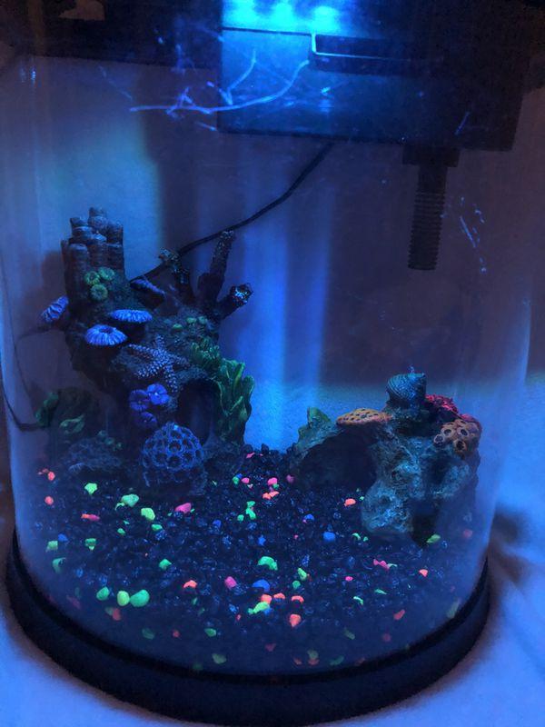 Mini Aquarium 🐟