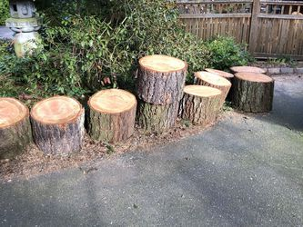 Firewood Rounds Ready To Split for Sale in Seattle, WA