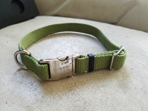 Dog collar for Sale in Rochester, MN