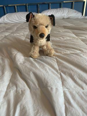 Dog Stuffed Animal for Sale in Jupiter, FL