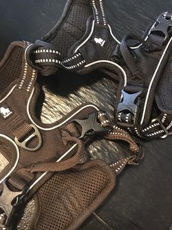 Medium Dog Harnesses for Sale in Mooresville,  IN