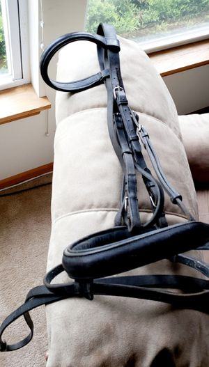 English Padded Leather Bridle & Reins Horse for Sale in Downers Grove, IL