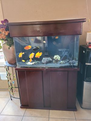 Acrylic Aquarium Fish tank with Stand for Sale in Bonita, CA
