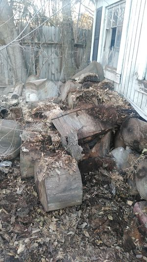 Large cutting logs for firewood cured year- for Sale in Cottonwood Heights, UT
