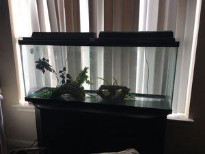 55 gallon fish tank for Sale in Houston, TX