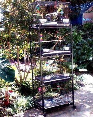 Cage stand for Sale in Fresno, CA