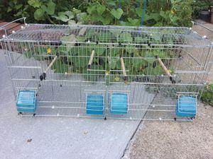Bird breeding cage for Sale in Dearborn Heights, MI