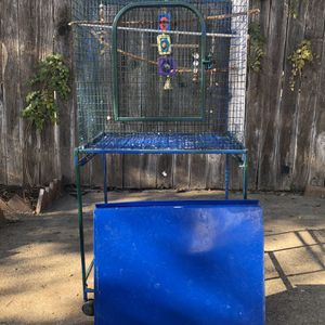3 Budgie birds And White The cage for Sale in Sacramento, CA