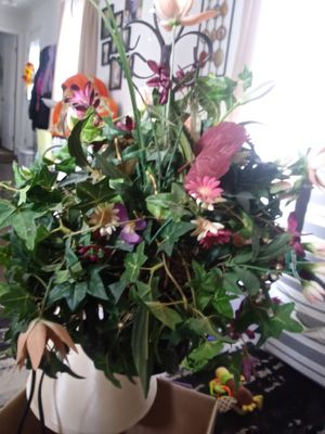 Artificial plants for Sale in Cranberry Township, PA