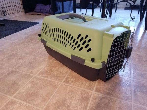 Small Pet Taxi/Carrier