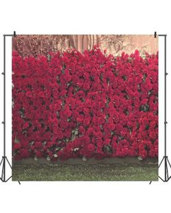 Portrait Backdrop Photography 8x8ft for Sale in Dinuba,  CA