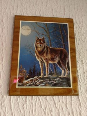 Wolf Picture for Sale in Peoria, IL