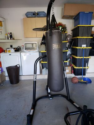 100lb Everlast punching bag w/ speed bag & gloves for Sale in Miami, FL