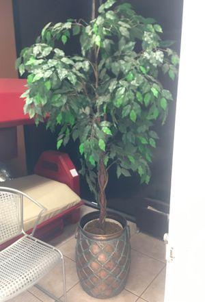 Fake indoor plant for Sale in Clovis, CA