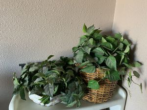 Artificial plants for Sale in Henderson, NV