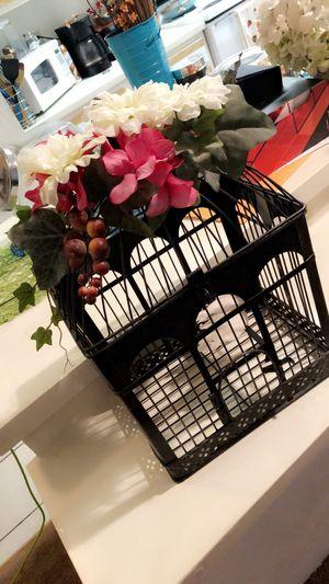 Decor bird cage for Sale in Orlando, FL