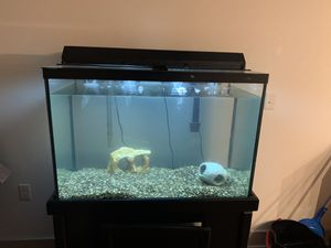60 gallons aquarium with everything needed to start a aquarium for Sale in Detroit, MI