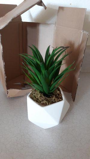 "7"" INCH ARTIFICIAL SUCCULENT PLANT / BRAND NEW for Sale in Surprise, AZ"