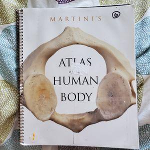 Atlas human body for Sale in Carlsbad, CA