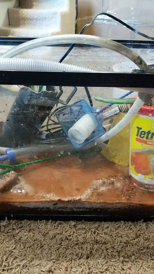 10gal fish tank with all supplies, perfect for planted aquariums for Sale in Pomona, CA