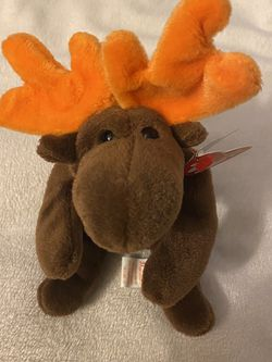 Chocolate Moose Beanie Baby for Sale in Morgan Hill,  CA
