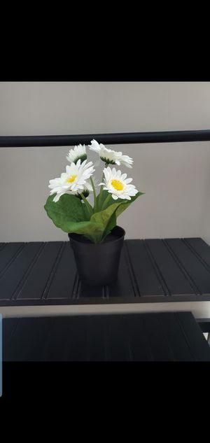 Small flower pot for Sale in Charlotte, NC