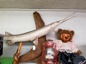 Mounted garr for Sale in Spout Spring, VA