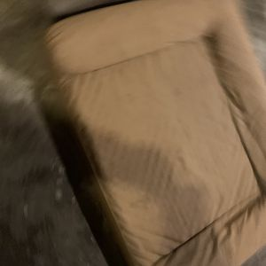 Free Dog Beds for Sale in Seattle, WA