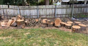 FREE FRESH CUT CEDAR ROUNDS FREE for Sale in Tacoma, WA