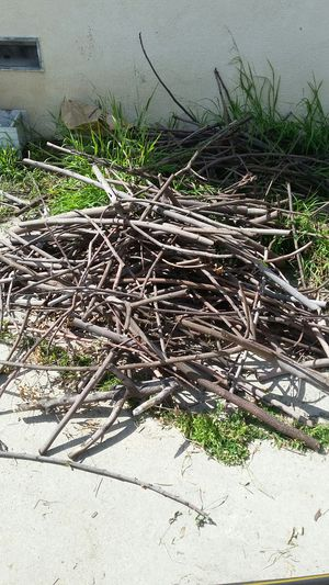 Firewood for Sale in Long Beach, CA