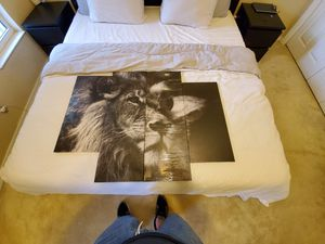 New Lion Head Portrait Wall Art Black And WhiteAbstract Painting Pictures Print On Canvas Animal The Picture For Home Modern Decoration for Sale in Naples, FL