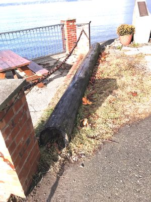 Free creosote piling for Sale in Seattle, WA