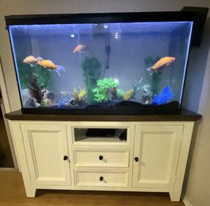 75 gallon fish tank for Sale in Gilbert, AZ