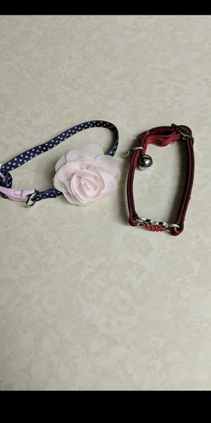Dog/cat collar for Sale in Alexandria, VA