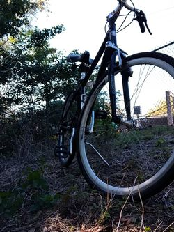 Mens Schwinn Avenue 700c Hybrid Bicycle for Sale in Deltona,  FL