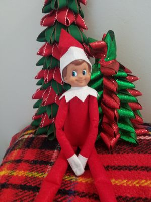 Elf on the Shelf Boy, brown hair blue eyes for Sale in Princeton, FL