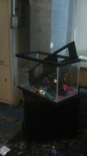 Fish tank every thing there for Sale in Cincinnati, OH