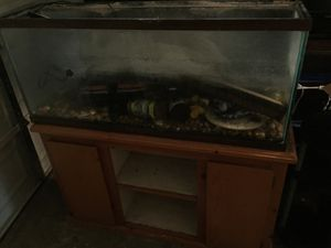 70 gal fish tank for Sale in Victoria, TX