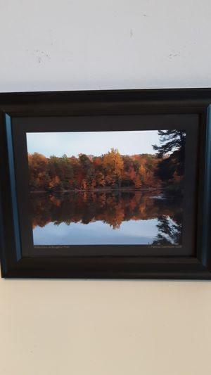 8 x 10 black framed picture, Reflections at Boughton Park for Sale in Sunrise, FL