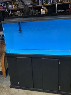 80 gallon Fish Tank for Sale in Los Angeles,  CA
