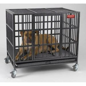 Xlarge dog crate for Sale in Tampa, FL