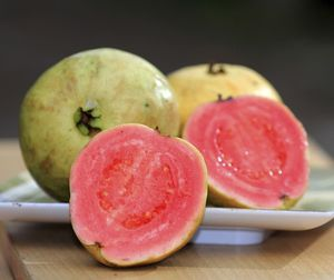 Pink Guava Fruit Trees 7 gallon for Sale in Lake Worth, FL