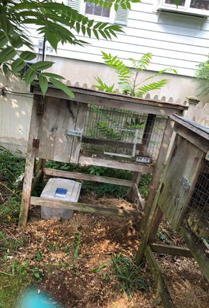 Rabbit hutch for Sale in Southington, CT