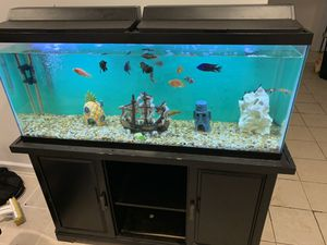 50 gal Fish tank and accessories for Sale in Dumfries, VA