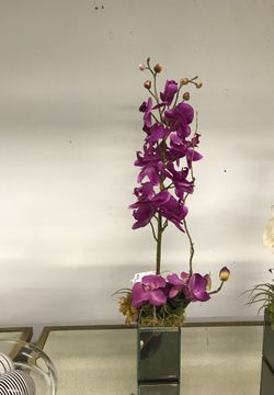 Orchid topiary in mirrored box for Sale in Wayne,  PA