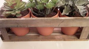 Brand new beautiful wood table top piece with 3 artificial succulents plants in clay pots. Gorgeous!!! for Sale in Oviedo, FL